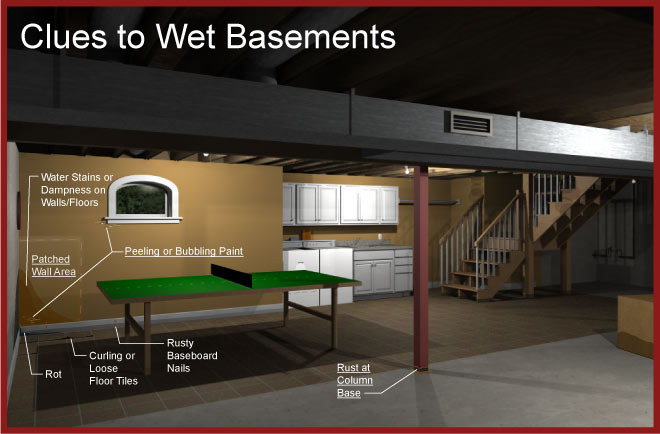 Signs Of A Wet Basement