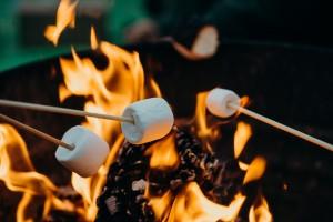 Camp Fire Michigan