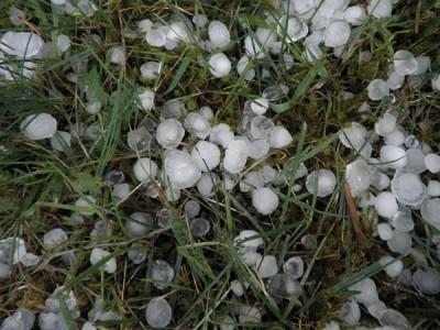 Hail in Front Yard